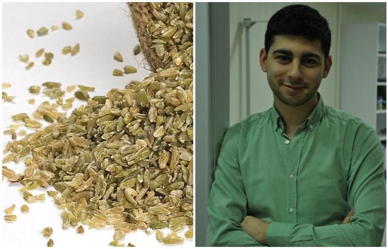 """Diyetisyen Ahmet Akbulut: Sağlık için """"Firik Bulguru"""" yeme vakti!"""